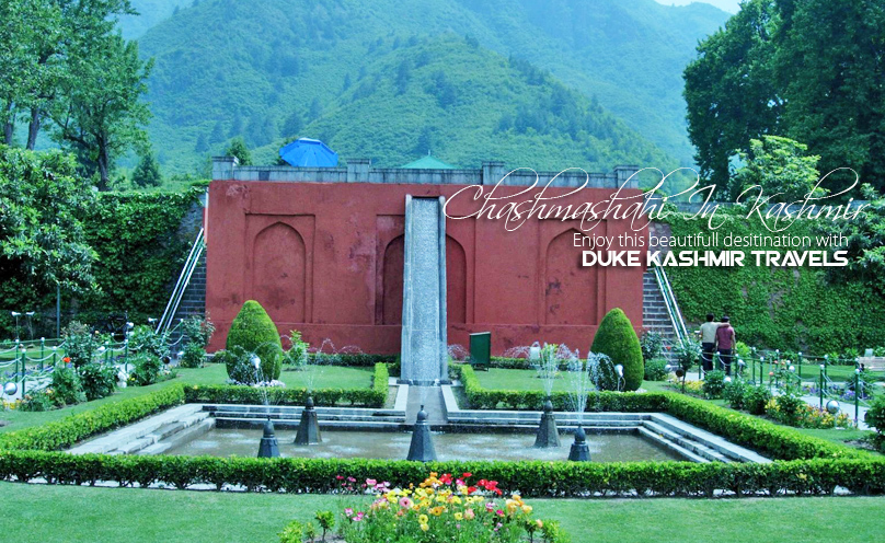 Kashmir Tour Packages